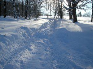 Sníh na cestě