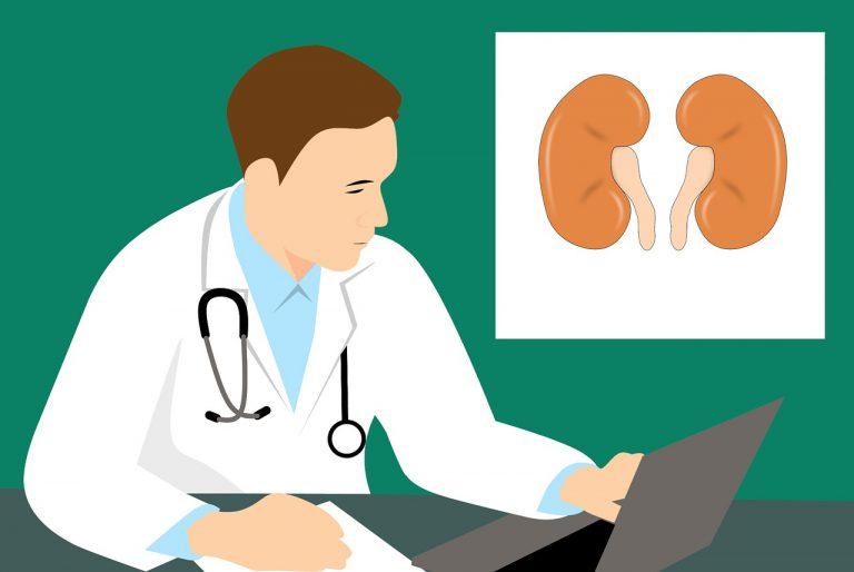 Selhání ledvin brání jen včasné odhalení nemoci